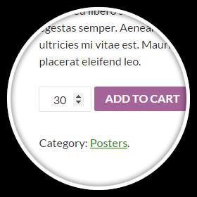 Maximum Quantity Feature
